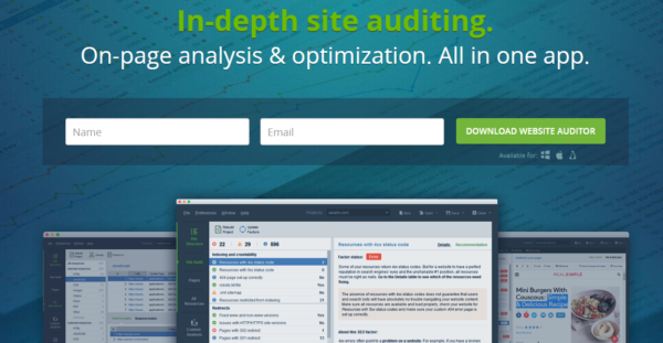 Website Auditor - On Page Optimization
